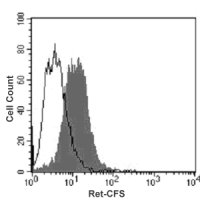 Intracellular staining of SH-SY5Y cells with CFS-conjugated anti-human Ret (filled histogram) or with isotype control antibody (open histogram).