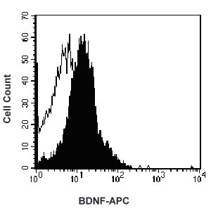 Intracellular staining of activated human T cells with APC-conjugated anti-human BDNF-APC, filled histogram) or isotype control (open histogram).