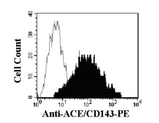 Human dendritic cells, generated by culturing monocytes in the presence of IL-4 (20 ng/mL) and GM-CSF (50 ng/mL) for 5 days, were stained with anti-human ACE/ CD143-PE (filled histogram) or isotype control (open histogram).