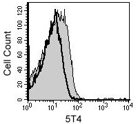 Differentiated D3 cells were stained with anti-5T4 (filled histogram)